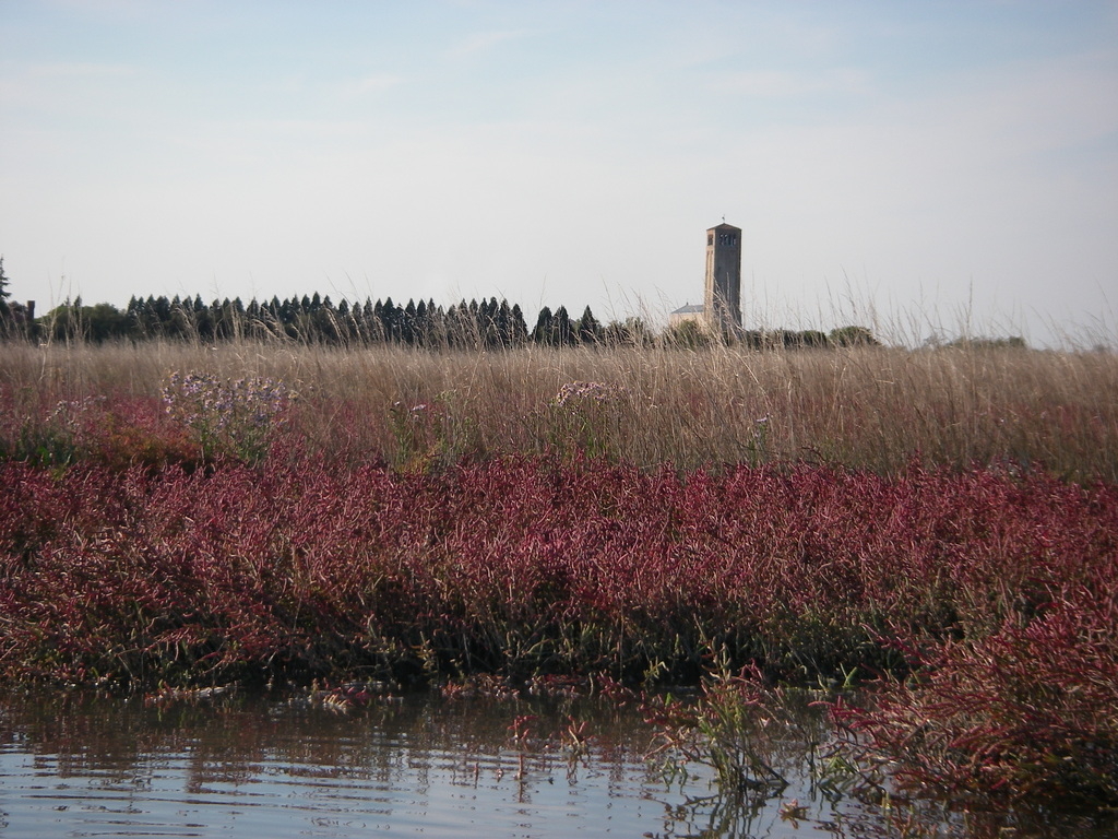 Torcello seen from the lagoon