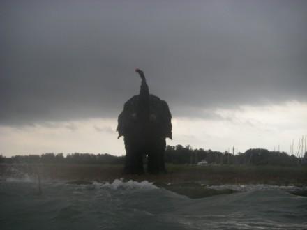 Angry lagoon elephant - 1