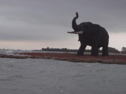 Angry lagoon elephant - 2