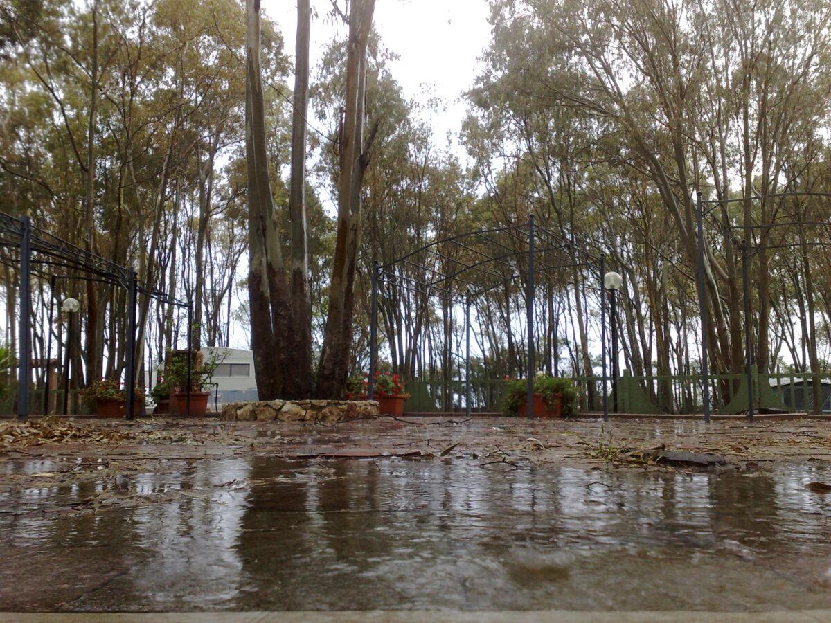 Camping Calik, Fertilia