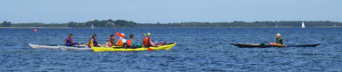 Kayak coach exam