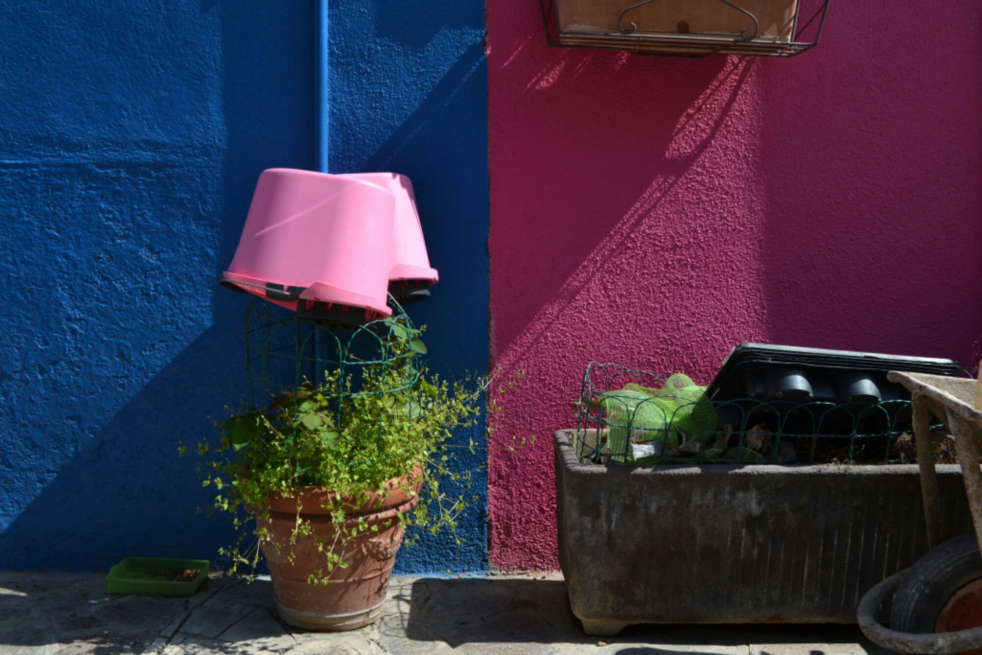 The Burano Colour Game