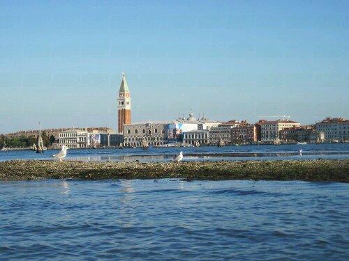 Venice is not a beach